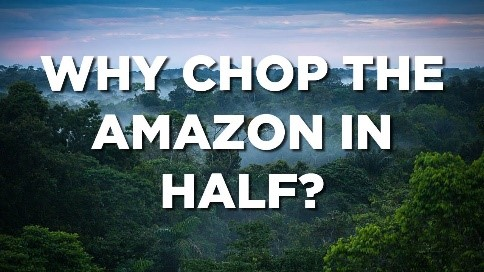 Why Chop the Amazon in Half